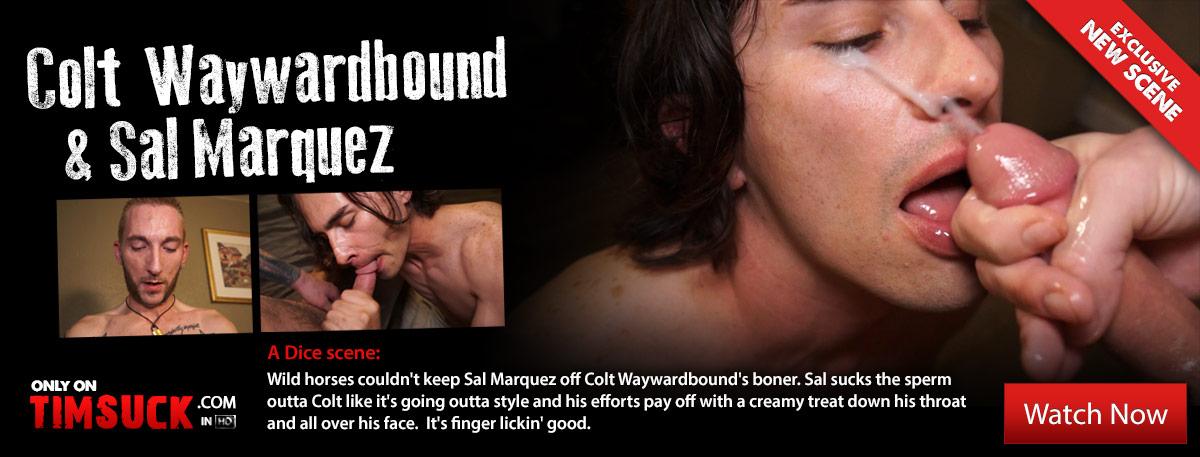 Colt Waywardbound & Sal Marquez